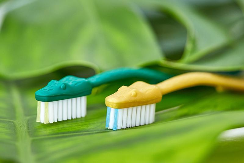 「ハブ歯ブラシ」の画像検索結果